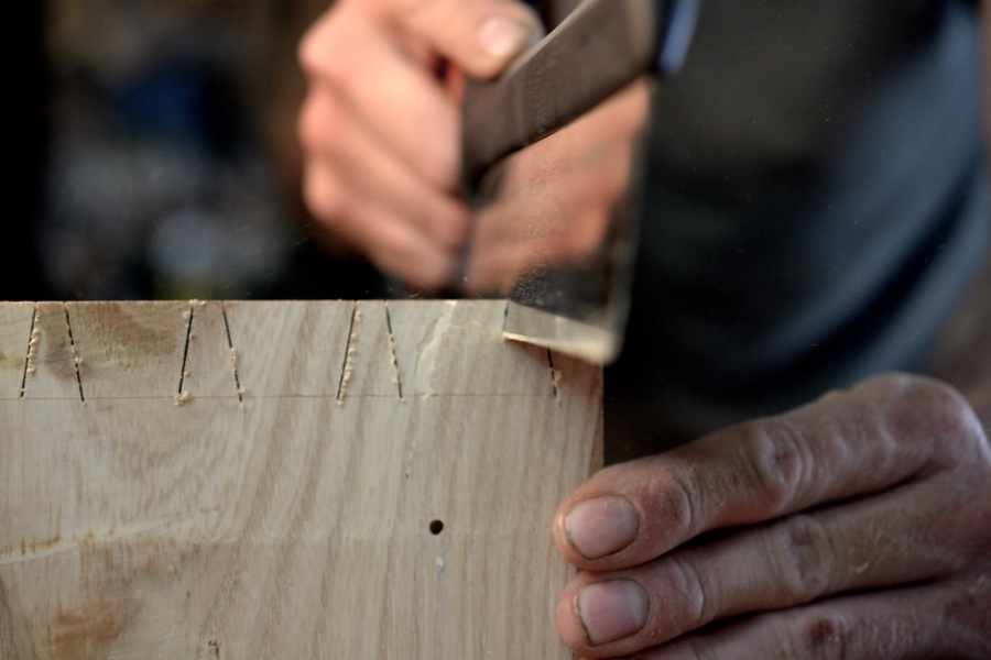 sawing dovetails in ash