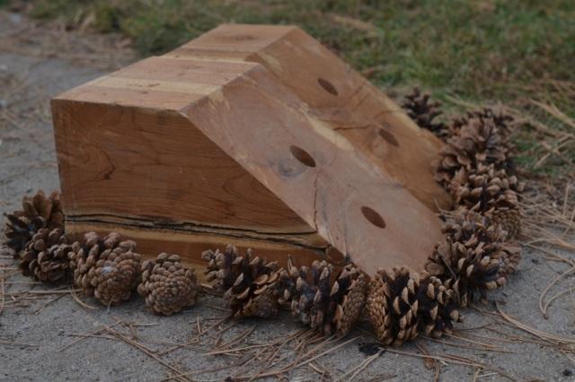 Wood Fire06
