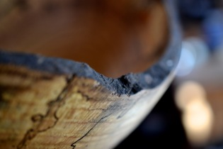 A beaver girded and killed the red oak tree form which this bowl was made. I endeavored to feature his his teeth marks in a few of the bowls.