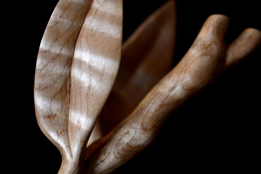 golden-ratio-spoon14